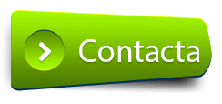 Contacto Globalyza protocolo familiar