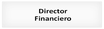 Proceso de selección : Director Financiero