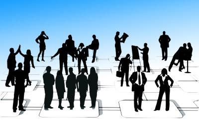 Organización matricial: adaptación e innovación