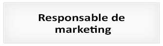 Proceso de selección: Responsable de marketing