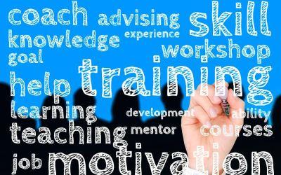 Importancia en la gestión del talento humano